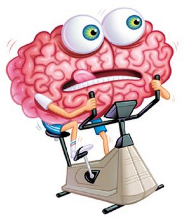 cerebropedaleando-620x747